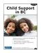 Child Support in BC cover image.jpg