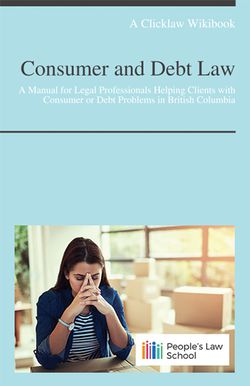 Cover of Consumer and Debt Law